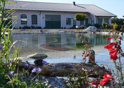 Schwimmteich - Malecek Gartengestaltung